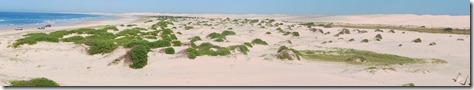 Sandduenen